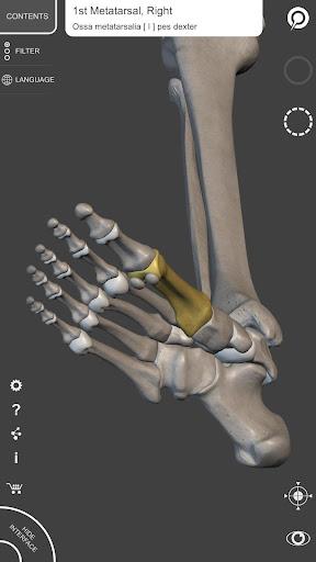 Skeleton   3D Anatomy 2.5.3 Screenshots 15