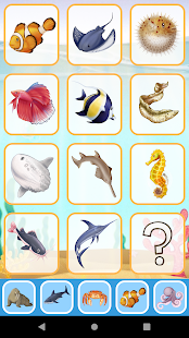 Sea Animals for toddler Babies cards Animal sounds