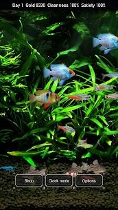 Tropical Fish Tank – Mini Aqua 1