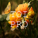 Text Over Image PRO : Write Text On Photos, No Ads