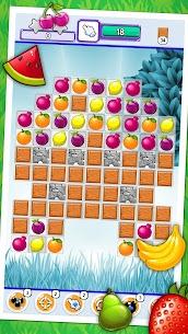Fruit Party 1.0.2 Mod APK [Premium] 1