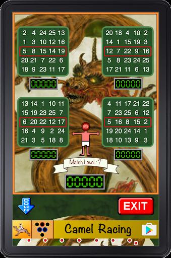 Bingo Pinball Dragon screenshots 5