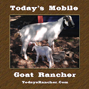 Today's Mobile Goat Rancher  Icon