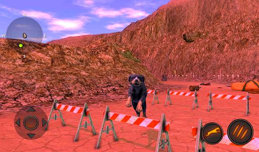 Rottweiler Dog Simulator  screenshots 16