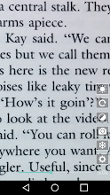Magnifier screenshot thumbnail