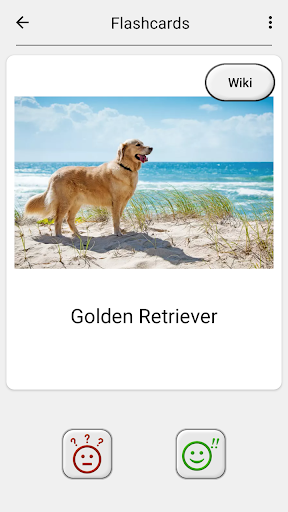 Dogs Quiz - Guess Popular Dog Breeds in the Photos  Screenshots 13