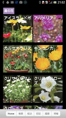 散歩で見かける四季の花のおすすめ画像3
