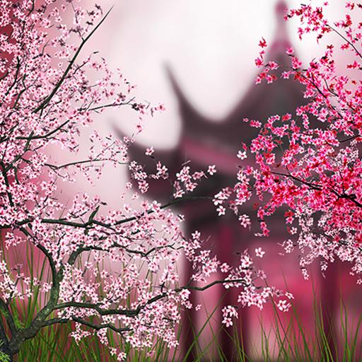 Sakura Live Wallpaper Apps On Google Play