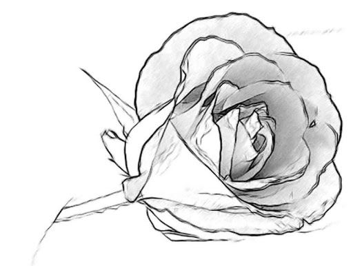 Easy Pencil Drawing Ideas 4.0 Screenshots 5