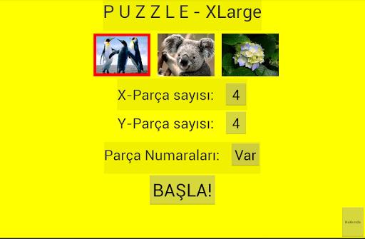 puzzle screenshot 1