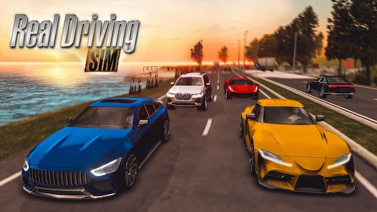 Real Driving Sim Apk, Real Driving Sim Para Hileli, Real Driving Sim Son Sürüm, Real Driving Sim Hile İndir 1