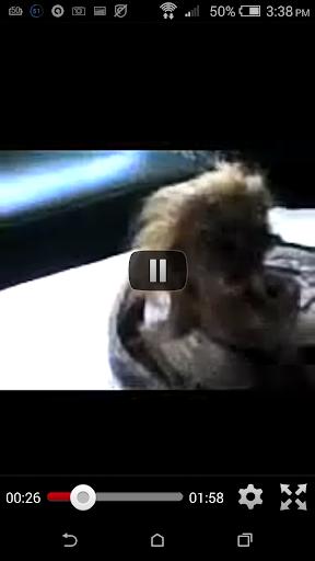 Islamic Miracle Videos screenshots 2