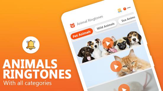 Animal Ringtones - Animal Wallpaper Bird Ringtones