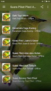 Suara Pikat Burung Pleci Ampuh 1.0 Mod APK Updated Android 2