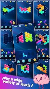 Block! Hexa Puzzle™ MOD APK (Instant Win) Download 6