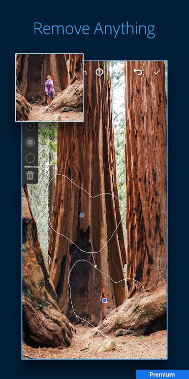 Adobe Lightroom - Photo Editor & Pro Camera  poster 5