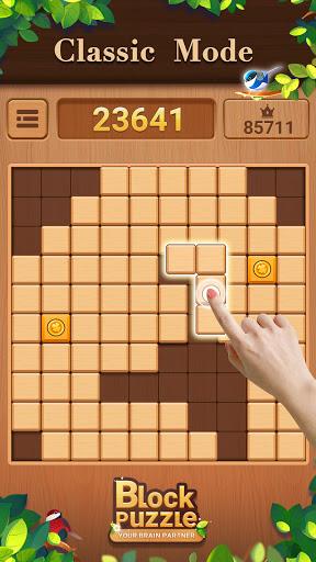 Wood Block Puzzle: Classic wood block puzzle games screenshots 2