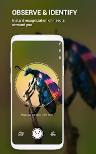 Insect identifier App by Photo, Camera Mod Apk (Subscription Activated) 9