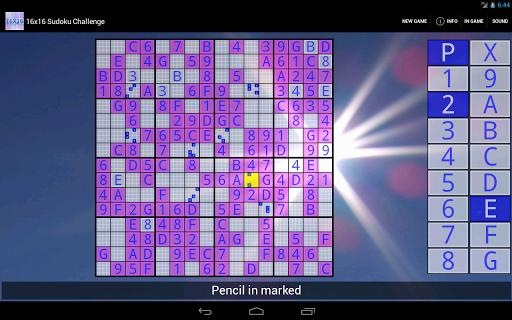 16x16 Sudoku Challenge HD 3.8.5 screenshots 3