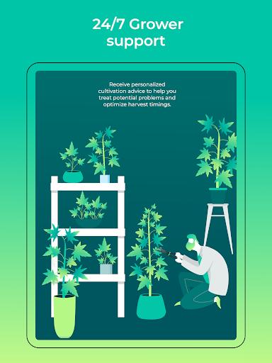HiGrade: THC Testing & Cannabis Growing Assistant 1.0.320 Screenshots 10
