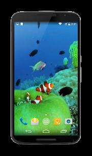 Aquarium Video Live Wallpaper For Pc – Free Download 2020 (Mac And Windows) 1