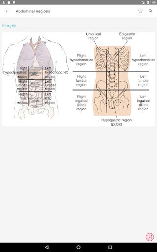 Taber's Cyclopedic (Medical) Dictionary 23rd Ed.  Screenshots 10