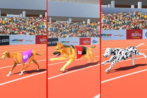 Dog Race Sim 2019: Dog Racing Games  screenshots 8