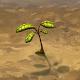 World Seed para PC Windows