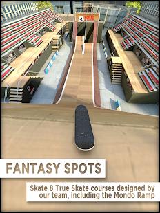 True Skate Unlimited Money