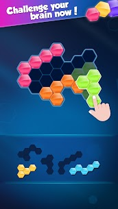 Block Hexa Puzzle MOD (Unlimited Gold Coins) 3