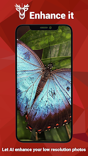 Enhance it Fix your Photos v2.2.7 Mod APK 6