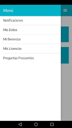 Mis Licencias 1.1.7 screenshots 5
