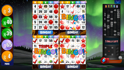 Absolute Bingo- Free Bingo Games Offline or Online 2.05.003 screenshots 2