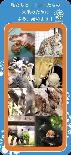 one zooのおすすめ画像4