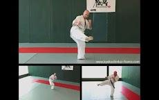 Kyokushin - Leg Techniquesのおすすめ画像4