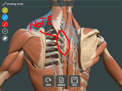 Visual Anatomy 3D | Human 1.2 Screenshots 11
