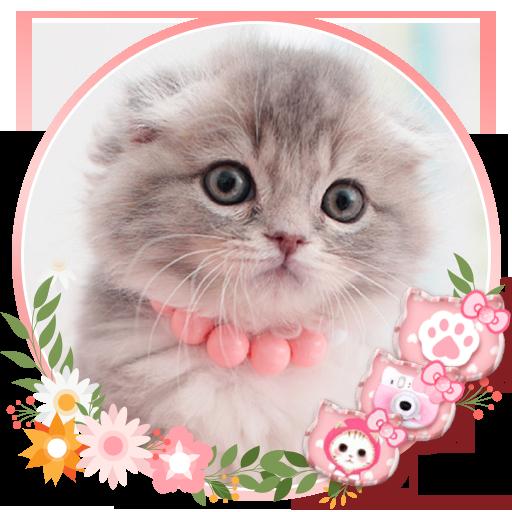 Pink Anak Kucing Kartun Animasi Tema 3d Wallpaper Aplikasi Di Google Play