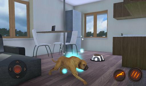 Fila Brasileiro Simulator 1.0.6 screenshots 15
