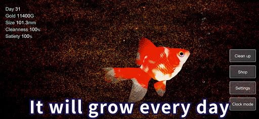Goldfish 3D - Relaxing Aquarium Fish Tank  screenshots 5