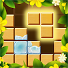 Classic Block Puzzle——Wood Block Puzzle Game