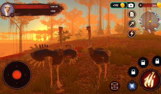 The Ostrich 1.0.4 screenshots 11