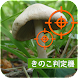 PictureThis:撮ったら、判る-1秒植物図鑑