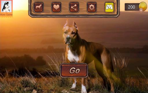 Pitbull Dog Simulator 1.0.3 screenshots 21