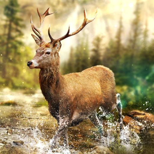 Hunting Clash: Hayvan Avlama Oyunu. Av Simülatörü