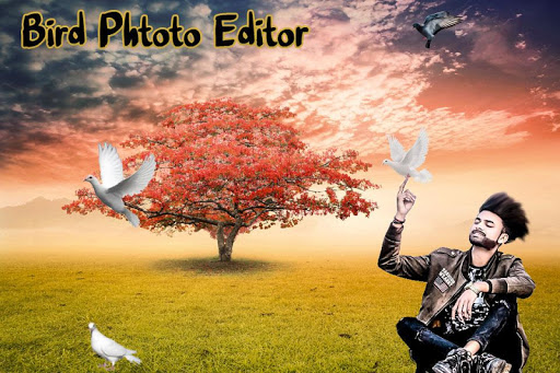 Bird Photo Editor android2mod screenshots 5