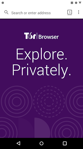Tor Browser: Official, Private, & Secure 10.0.7 (84.1.0-Release) Screenshots 7