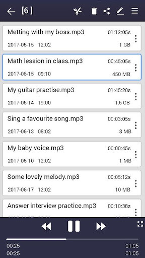 voice recorder  Screenshots 3