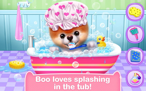 Boo - The World's Cutest Dog screenshots 8