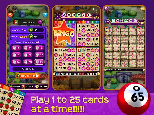 Magic Bingo 431 screenshots 4