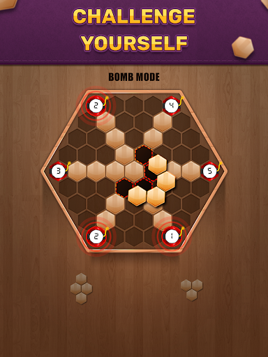 Wooden 100 Block Puzzle - Classic Wood Brain Game screenshots 8